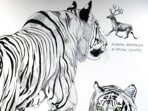 Tigers and Tribalism